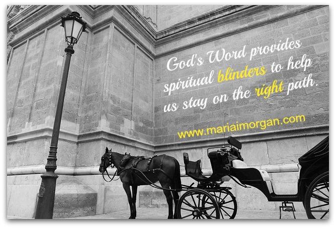 Spiritual blinders